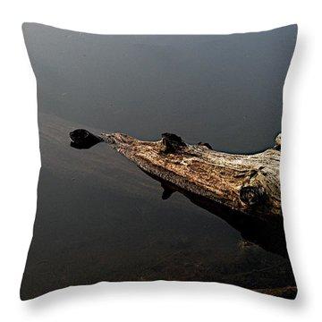 Glen's Log Throw Pillow by Joseph Yarbrough