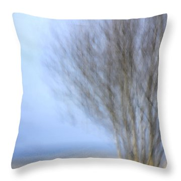 Glimpse Of Trees Sand And Beach Throw Pillow