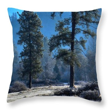 Throw Pillow featuring the photograph Global Warming by Julia Hassett