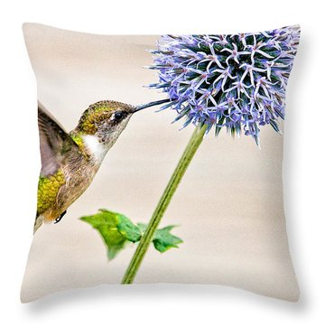 Globe Thistle Hummer Throw Pillow