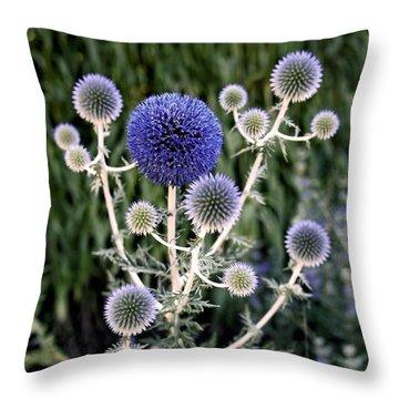 Globe Thistle Throw Pillow by Rona Black