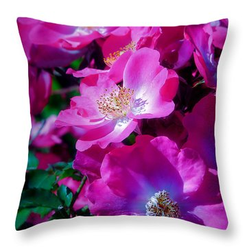 Glorious Blooms Throw Pillow
