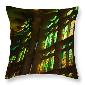 Glorious Colors And Light Throw Pillow by Georgia Mizuleva