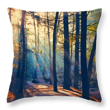 Glorious Forest Morning Throw Pillow
