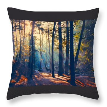 Glorious Forest Morning Throw Pillow by Diane Alexander