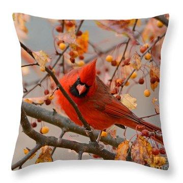 Glorious Throw Pillow by Nava Thompson