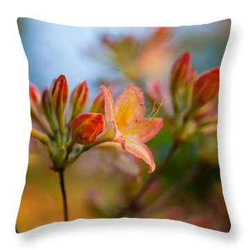 Glorious Orange Blooms Throw Pillow by Mike Reid