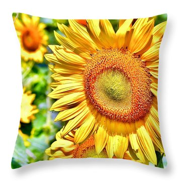 Glorious Sunflowers Throw Pillow