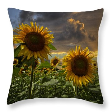 Throw Pillow featuring the photograph Glory by Debra and Dave Vanderlaan