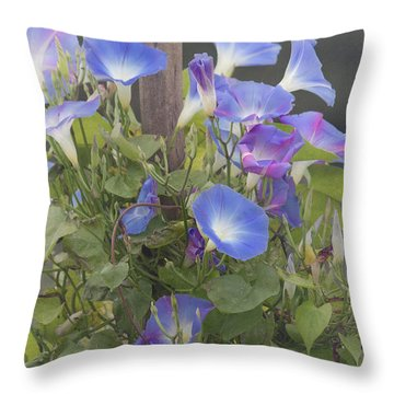 Glory In The Morning Throw Pillow by Kim Hojnacki