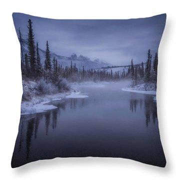 Frozen Water Throw Pillows