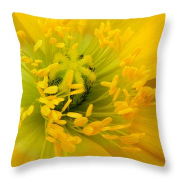 Throw Pillow featuring the photograph Glory Of Nature by Deb Halloran