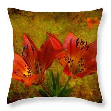 Glory Of The Plains Throw Pillow