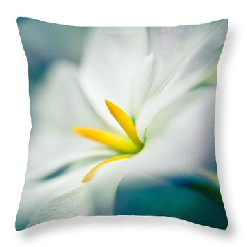 Glory Of The Sun Throw Pillow