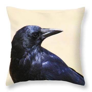 Glossy Crow Throw Pillow by Bob and Jan Shriner