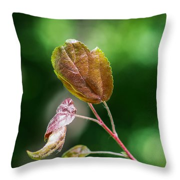 Glossy Nature - Featured 3 Throw Pillow by Alexander Senin