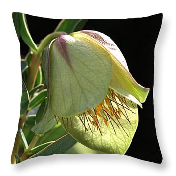 Glow Of The Bell Throw Pillow