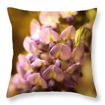 Wisteria Afterglow Throw Pillow