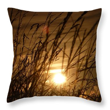 Glow Through The Grass Throw Pillow