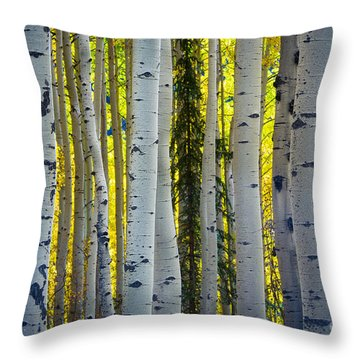 Glowing Aspens Throw Pillow by Inge Johnsson