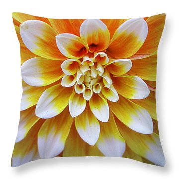 Glowing Dahlia Throw Pillow