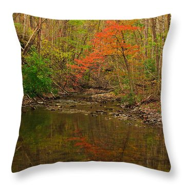 Glowing Fall Throw Pillow