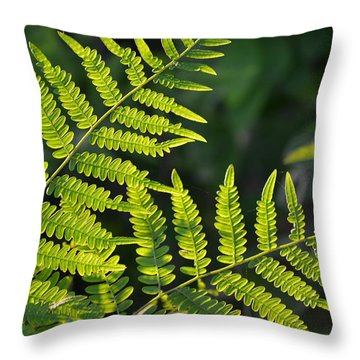 Glowing Fern Throw Pillow