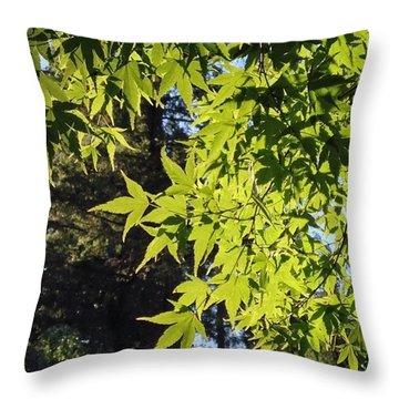 Glowing Greens My Favorite Maple Tree Throw Pillow