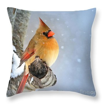 Glowing In The Snow Throw Pillow