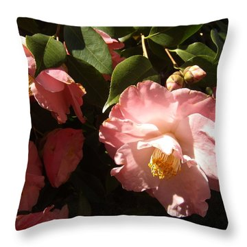 Glowing In The Sun Throw Pillow