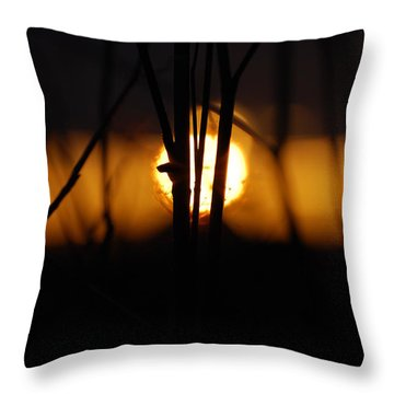 Throw Pillow featuring the photograph Glowing Lace by Jani Freimann