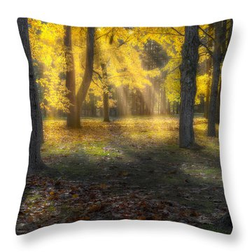 Glowing Maples Throw Pillow by Bill Wakeley