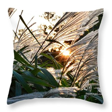 Glowing Pampas Throw Pillow