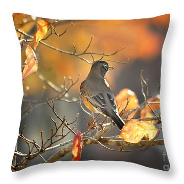 Glowing Robin 2 Throw Pillow by Nava Thompson