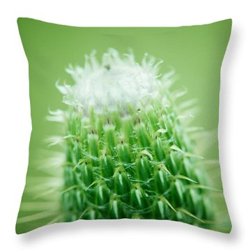 Glowing Thistle Throw Pillow