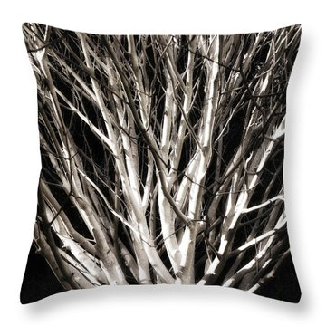 Glowing Tree Throw Pillow by Timothy Bulone