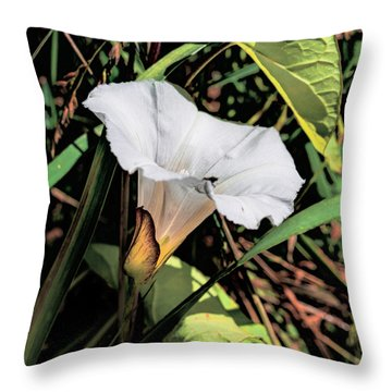 Throw Pillow featuring the photograph Glowing White Flower by Leif Sohlman