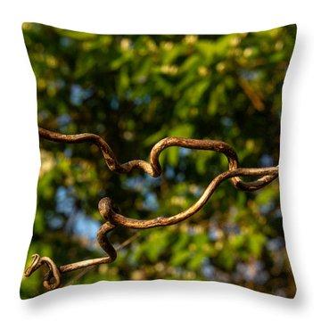 Gnarled Plant Tendrils Throw Pillow by Douglas Barnett