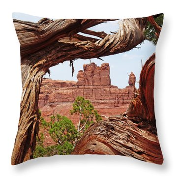 Throw Pillow featuring the photograph Gnarly Tree by Alan Socolik