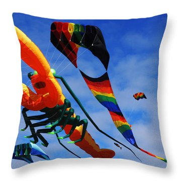 Go Fly A Kite 3 Throw Pillow