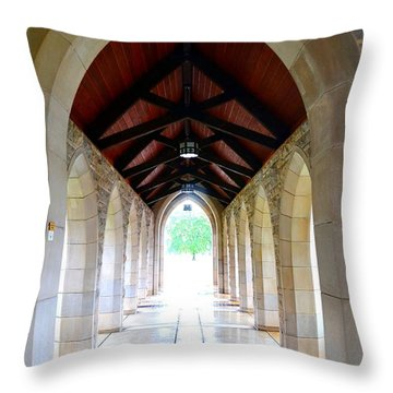 Throw Pillow featuring the photograph Go Into The Light by Deena Stoddard