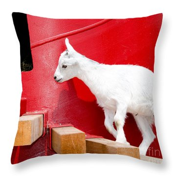 Kid's Play Throw Pillow