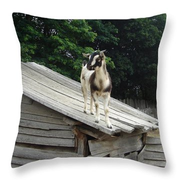 Throw Pillow featuring the photograph Goat On The Roof by Kerri Mortenson