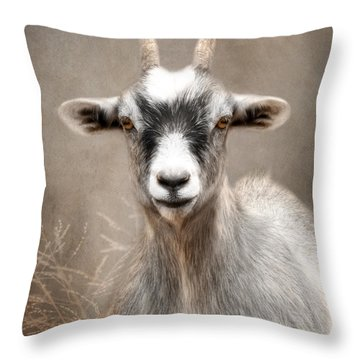 Goat Portrait Throw Pillow by Lori Deiter