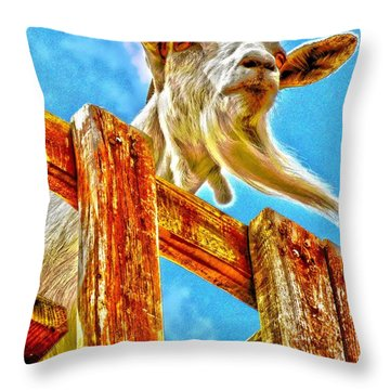 Throw Pillow featuring the photograph Goat Up High by Annie Zeno