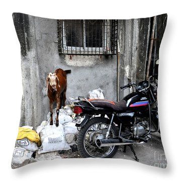Goatercycle Throw Pillow