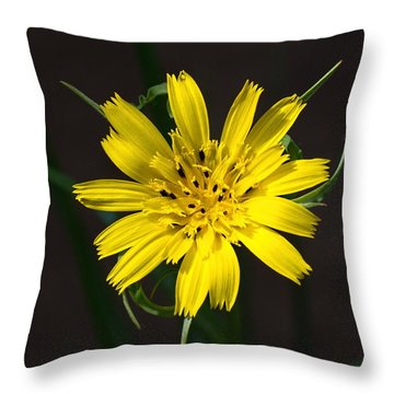 Goats Beard Flower Throw Pillow