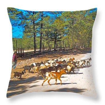 Goats Cross The Road With Tarahumara Boy As Goatherd-chihuahua Throw Pillow
