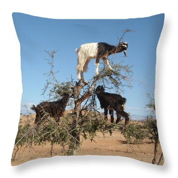 Goats In A Tree Throw Pillow