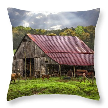 God Bless The Farmer Throw Pillow by Debra and Dave Vanderlaan
